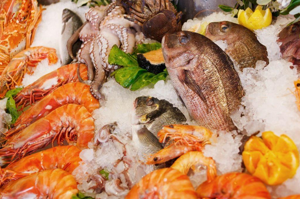 魚介類の食材